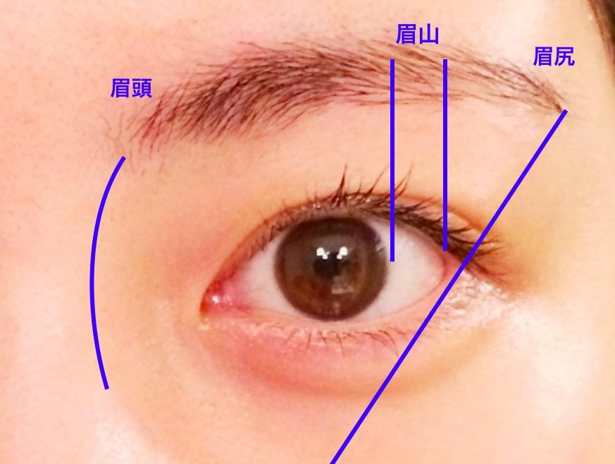 きれいな眉毛の書き方の画像